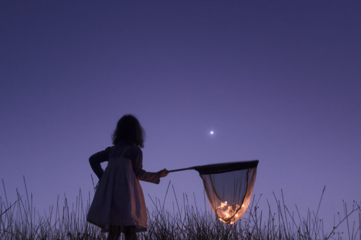 a child outside at night catching fireflies with a net
