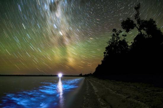 Bioluminescence and cosmic light