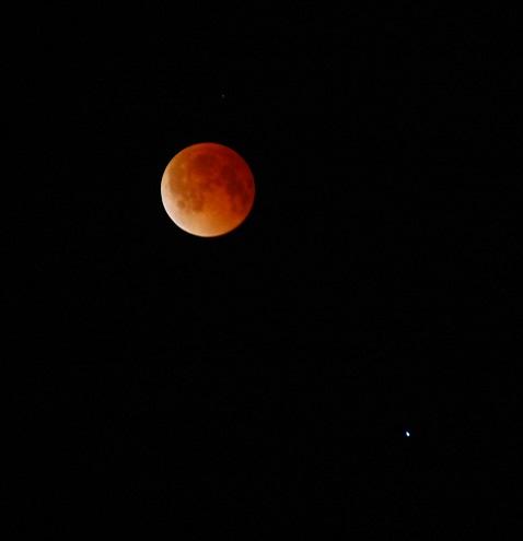 April 2014 Lunar Eclipse | Greg Penner - Sky & Telescope