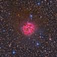 2014-08-09_53e6723a9710a_TrottierCocoonSkyandTelescope.jpg