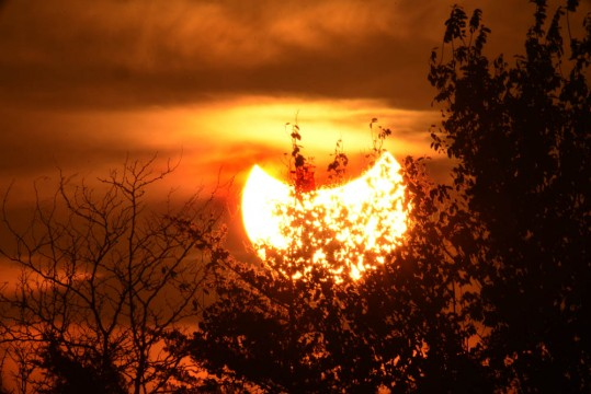 Sunset during partial solar eclipse, Weatherby, Missouri, October 23, 2014.Michael D. Radencich
