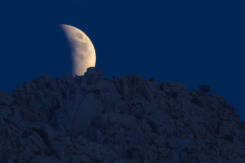 Lunar Eclipse above Joshua Tree