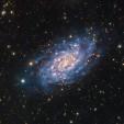 2015-10-31_563505e100c4d_NGC2403HaLRGB7crSS.jpg