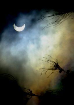 Partial solar eclipse, Kenya