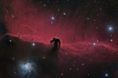 IC434, Horsehead nebula and surroundings, RGB and Ha blend