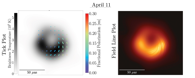 polarization of M87's black hole