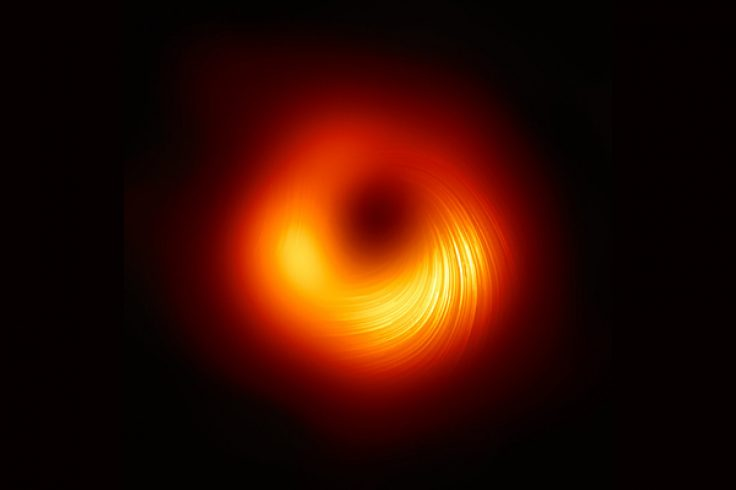polarized emission around black hole