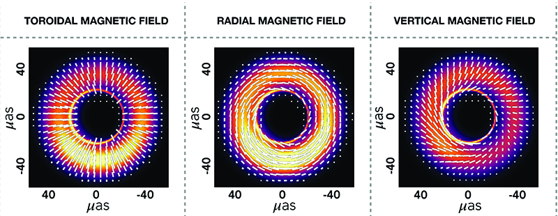 polarization patterns from differen magnetic field arrangements