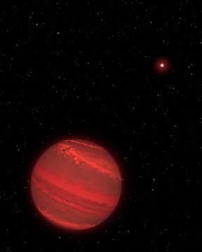 Super-Jupiter exoplanet orbiting far from its brown dwarf host