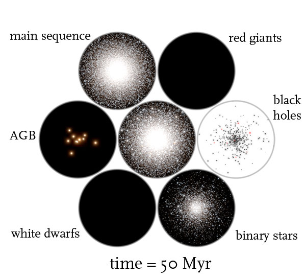 globular cluster simulation time = 50 Myr
