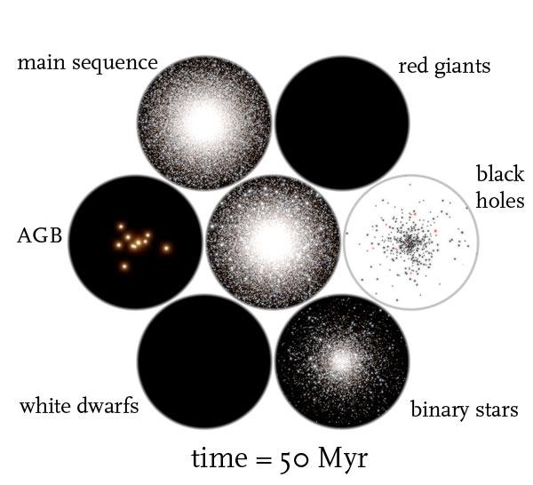 globular cluster simulation time = 50 Myr