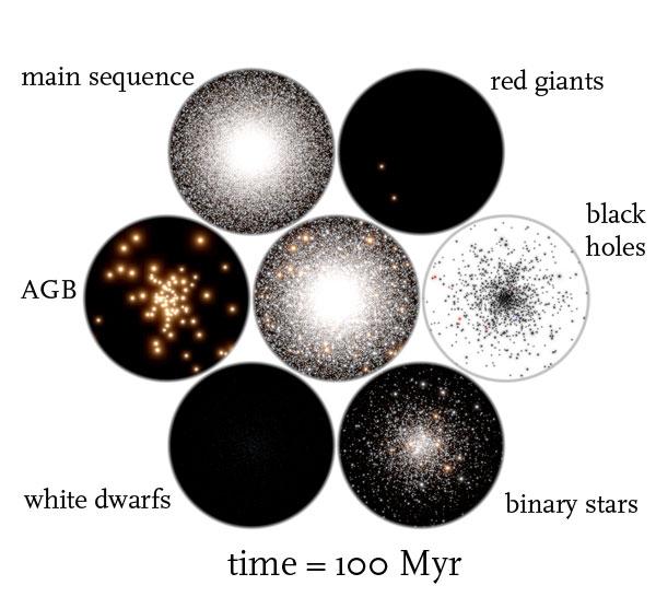 globular cluster t = 100 Myr