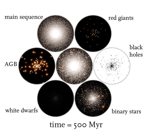 globular cluster simulation time = 500 Myr