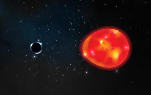 Closest black hole?