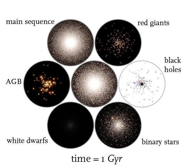 globular cluster simulation time = 1 Gyr