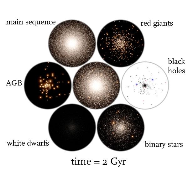 globular cluster simulation time = 2 Gyr