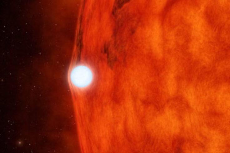 Lensing white dwarf