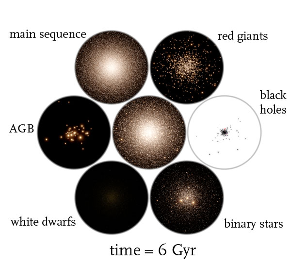 globular cluster simulation time = 6 Gyr