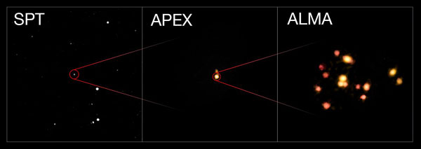 SPT, APEX, and ALMA observations of most distant protocluster