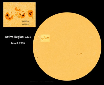 Active Region 2339 on May 8, 2015