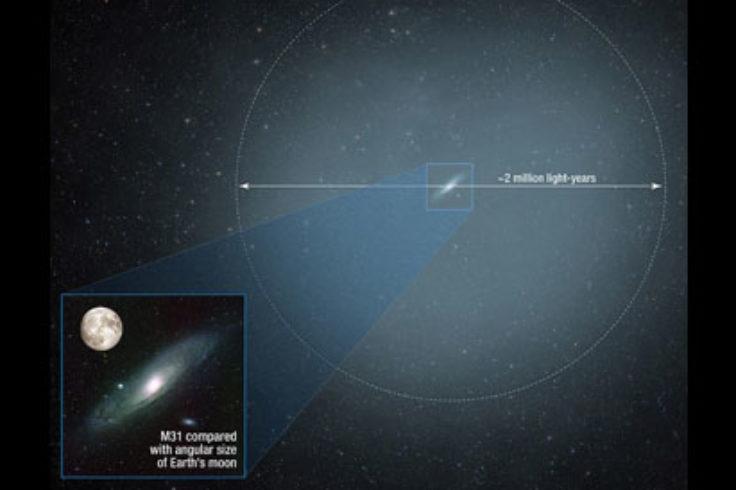 Andromeda's halo