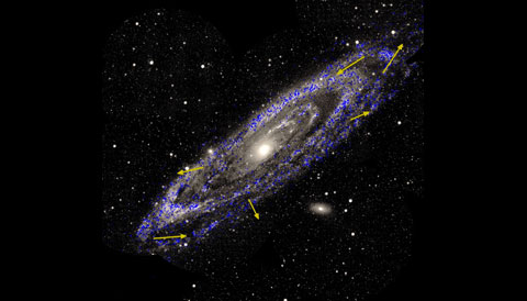 Rotation of Andromeda Galaxy