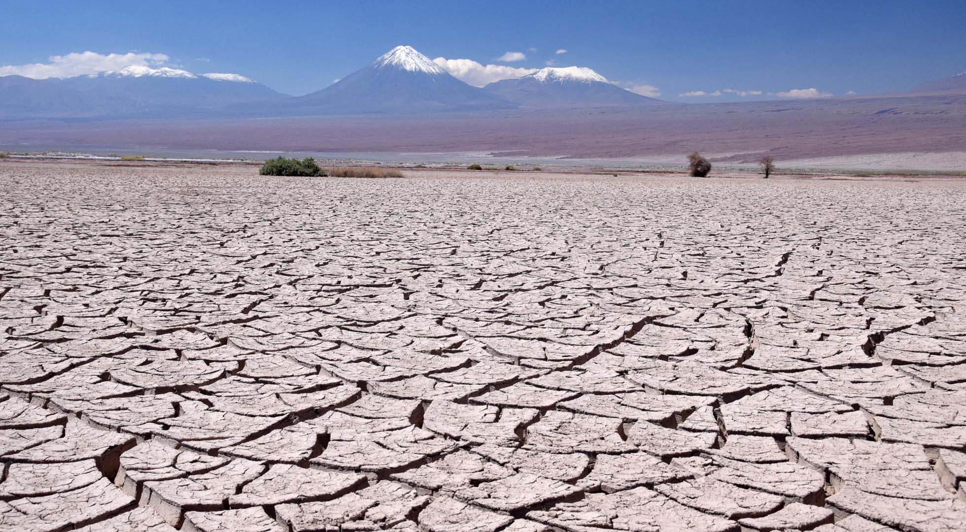Atacama mudcracks
