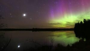 Aurora Venus Better 480x274