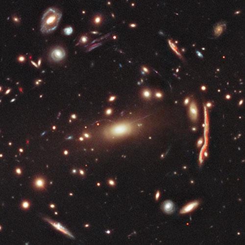 Bright cluster galaxy