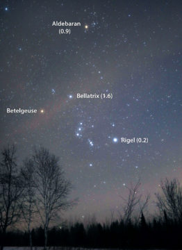 Estimate Betelgeuse's brightness yourself