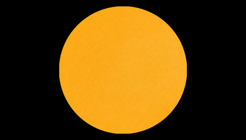 The blank Sun seen on January 12 by NASA's Solar Dynamics Observatory. SDO/HMI