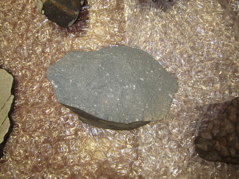 Calcium-aluminum inclusion in carbonaceous chondrite meteorite