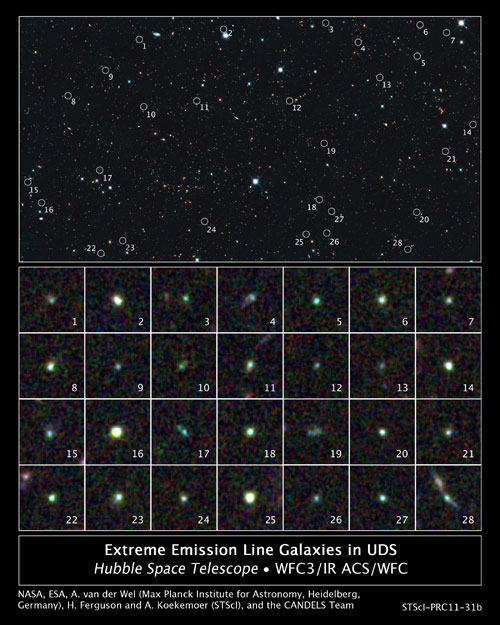 Dwarf galaxies in Hubble's Ultra Deep Survey