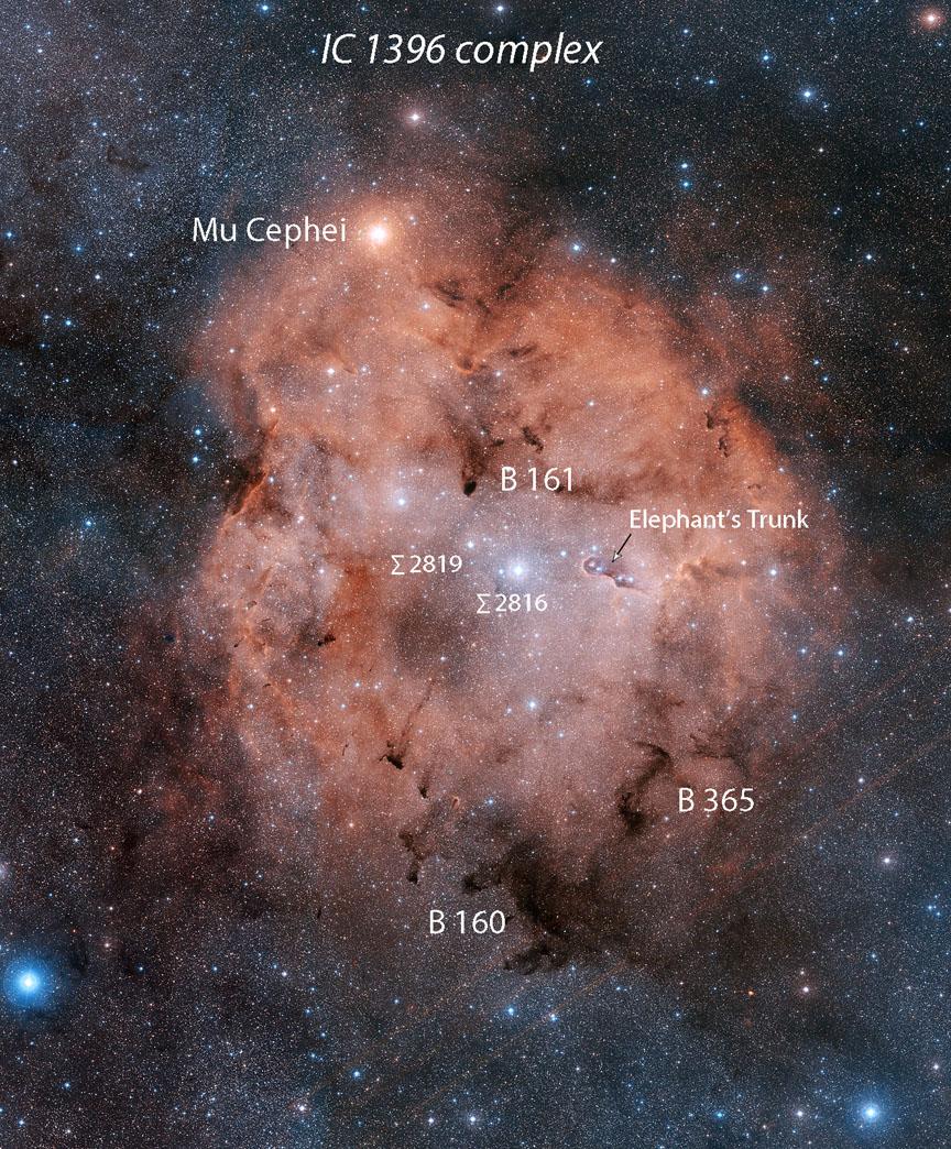 Peek inside IC 1396
