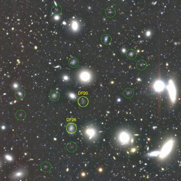 Dark galaxies in the Coma Cluster