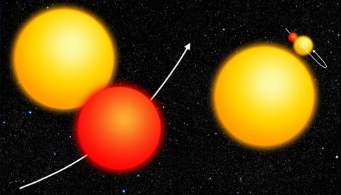 Common Kepler False Positives