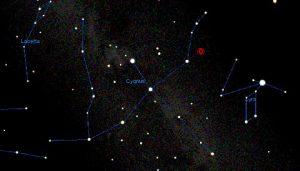 contact binary in Cygnus