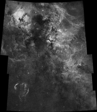 Cygnus in H-alpha
