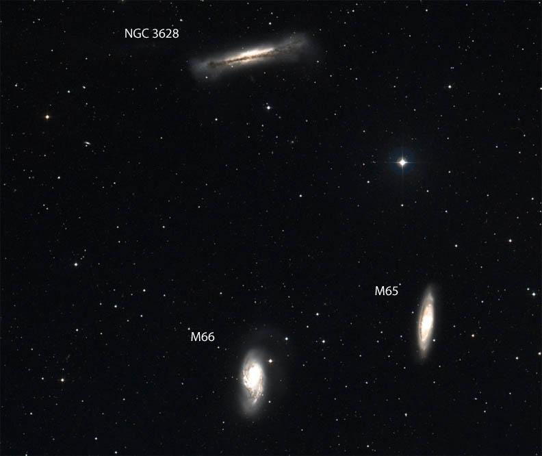 Vegan Burger Galaxy: NGC 3628