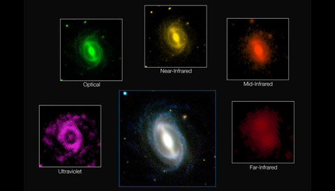 GAMA Galaxy Images