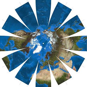 Earth globe daisy