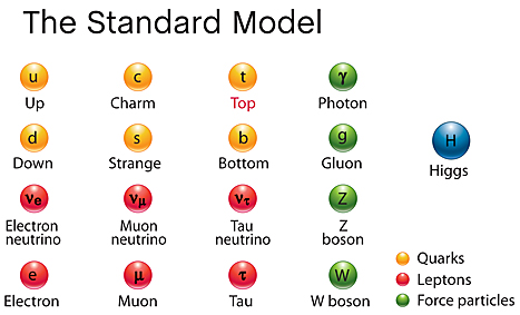 Elementary particles in Standard Model