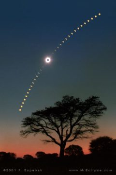 Eclipse Photography: Composite of Partial Phases