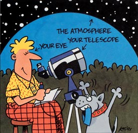 Observing Experience Cartoon