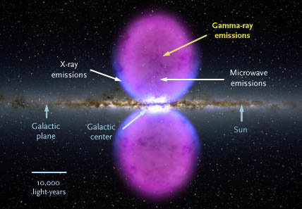Fermi bubbles in cross section