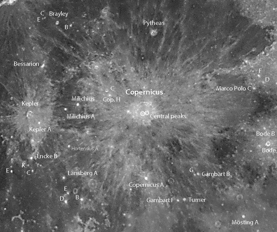 Coperni-dots
