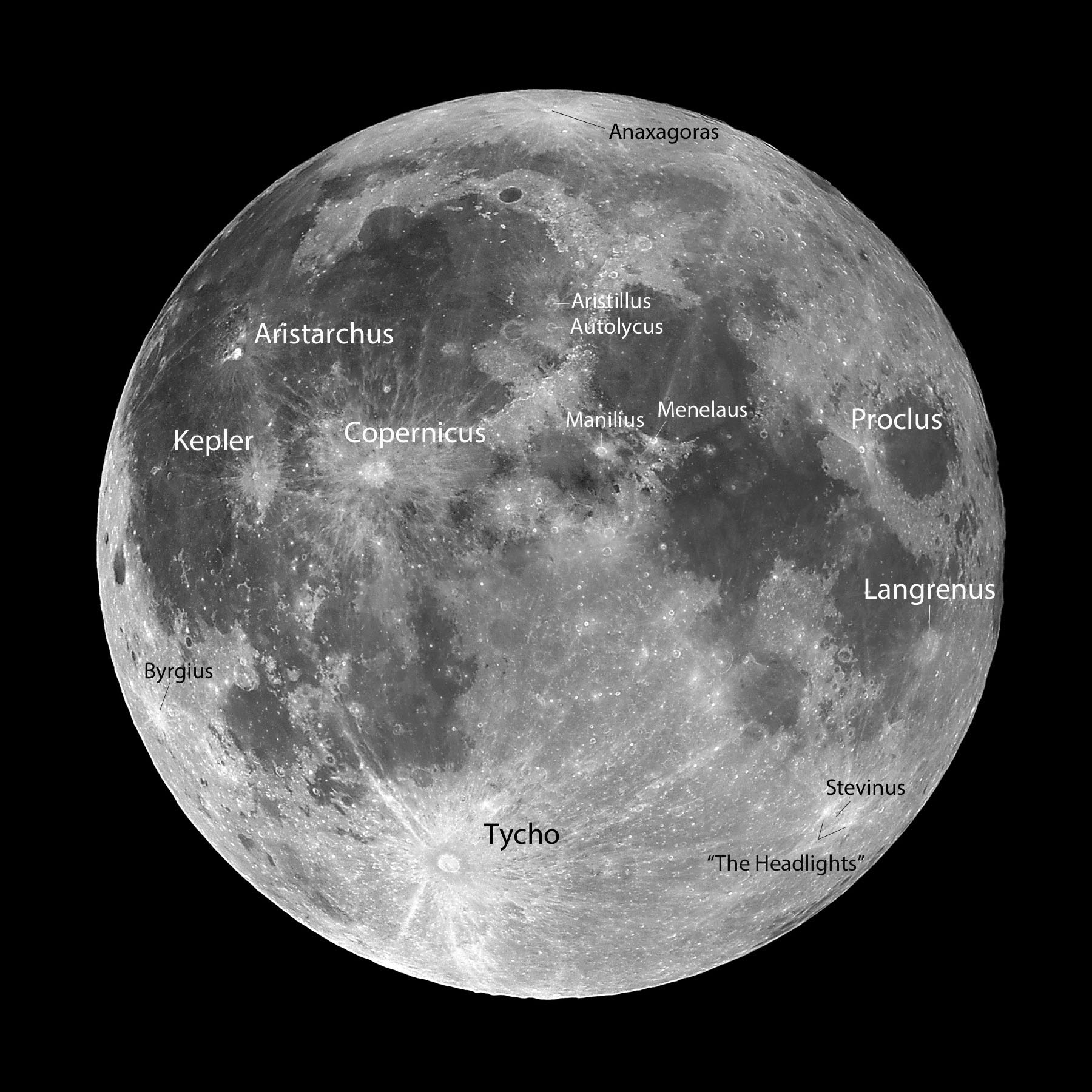Blue Moon Rayed...