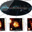 Gamma-ray emitting supernova remnants