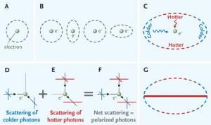 Polarized photons explained
