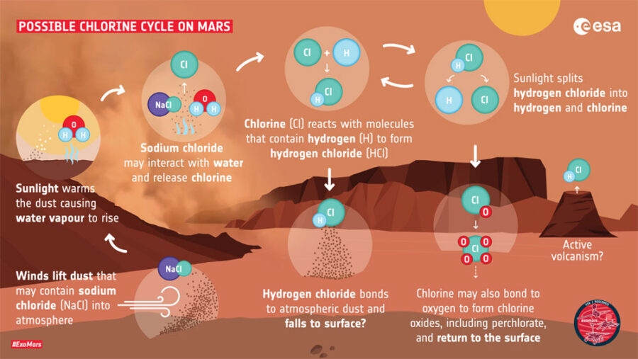 Possible chlorine cycle on Mars